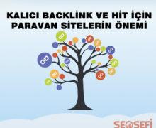 Kalıcı Backlink ve Hit için Paravan Sitelerin Önemi ?