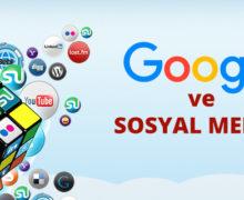 google sosyal medya