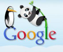 Google Panda ve Penguen arasındaki farklar nelerdir