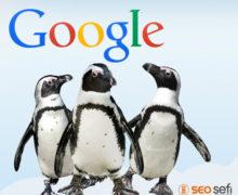 Google Penguen Güncelleştirmesi