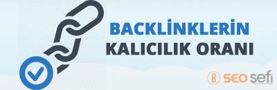 backlink kalıcılık oranı