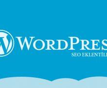 wordpress için eklentiler