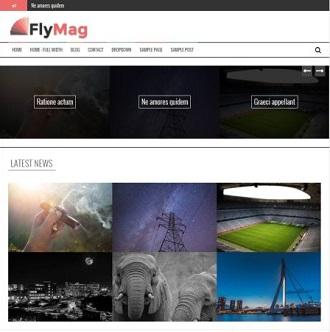 flymag