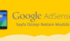 Sayfa Düzeyi Reklam Modülü Nedir