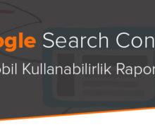 Search Console Yeni Mobil Kullanabilirlik Raporu Geliyor