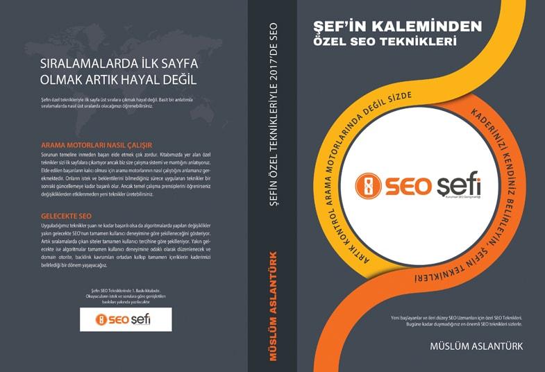 SEO Teknikleri Kitabı