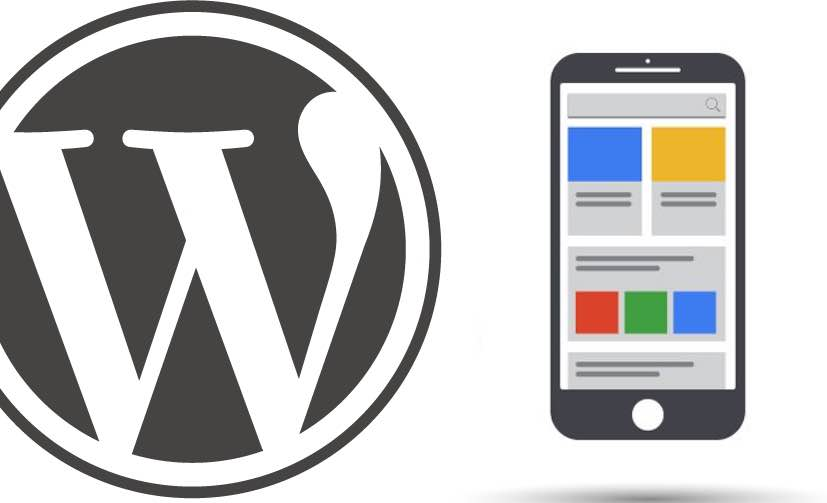 Google Zengin Karlar WordPress