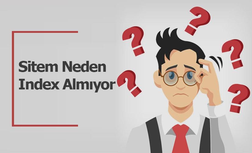 Sitem Neden İndex Almıyor ?