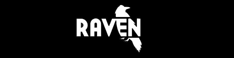 Raven Tools seo analiz aracı