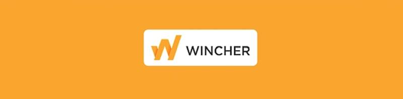 Wincher seo analiz aracı