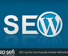 wordpress için seo eklentileri