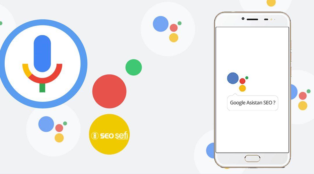 Google Asistan SEO İnceleme Sonuçları ve Tavsiyeleri