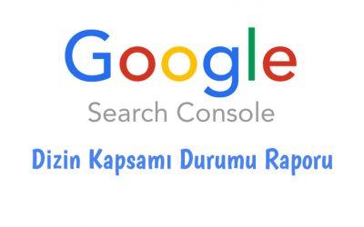 Google Search Console Dizin Kapsamı Durumu Raporu Nedir?