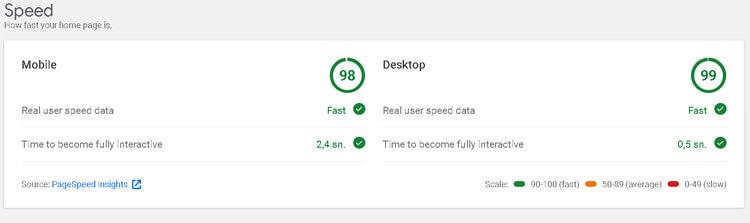 google site kit sayfa hızı
