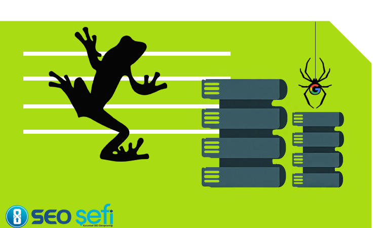 Screaming Frog Log File Analyser ile Verilerin Okunması