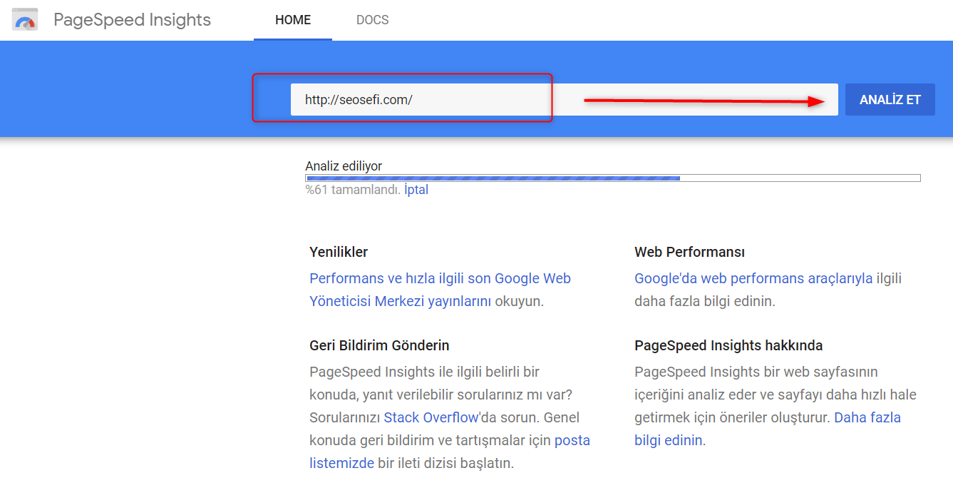 pagespeed site sorgulama