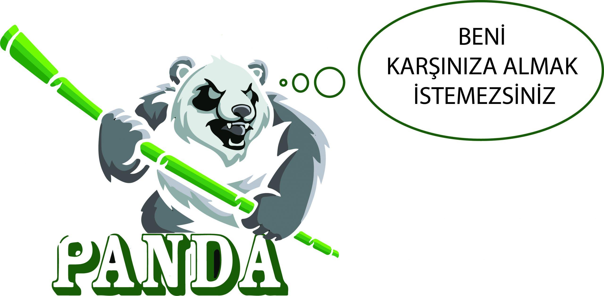 panda algoritma cezası
