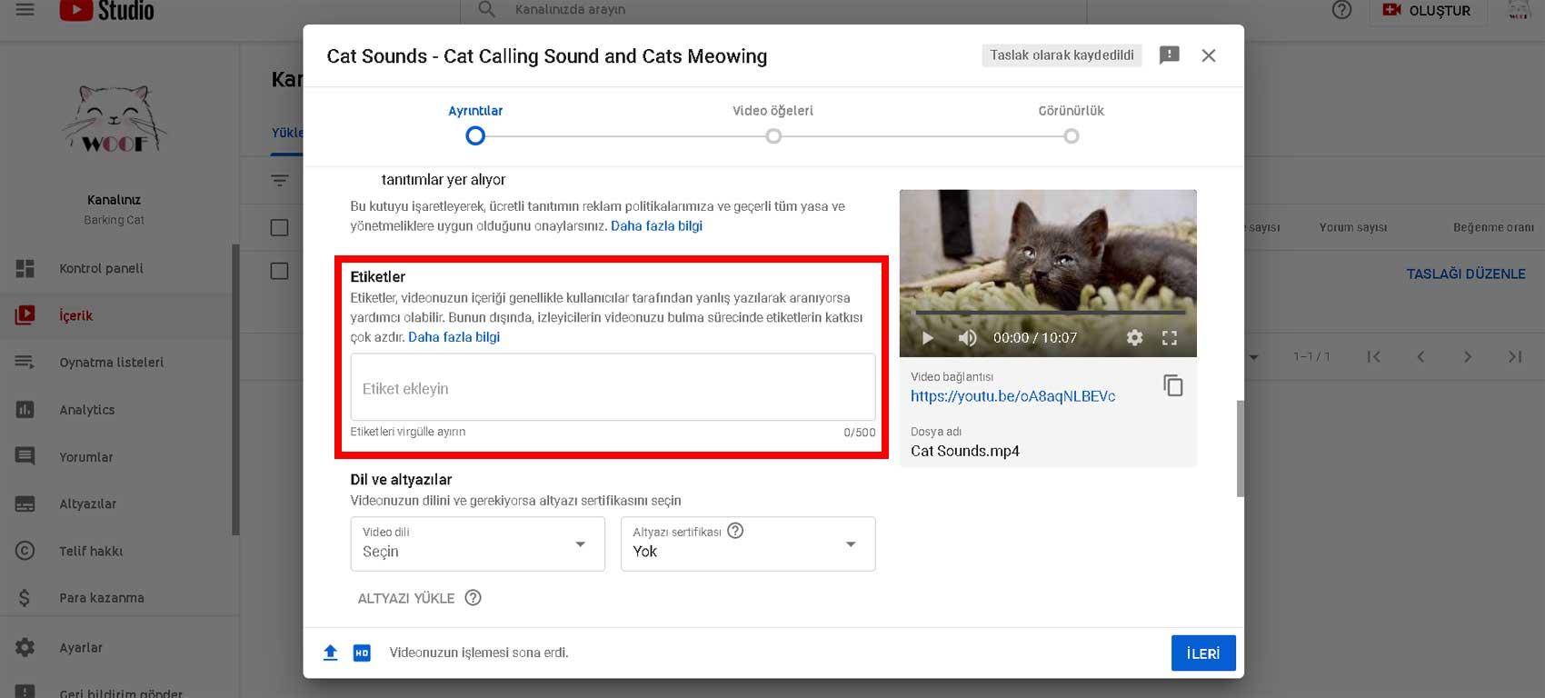 Youtube video etiket ekleme